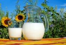 Ökotest bestätigt Milchqualität der Molkerei Berchtesgadener Land