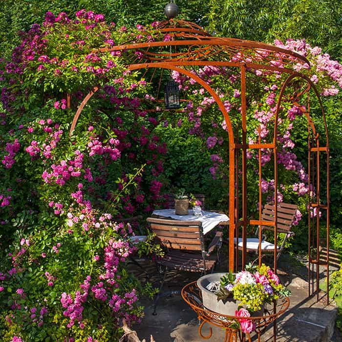 Kreischaer Rosenschänke: Spezialitäten im hauseigenen Rosengarten