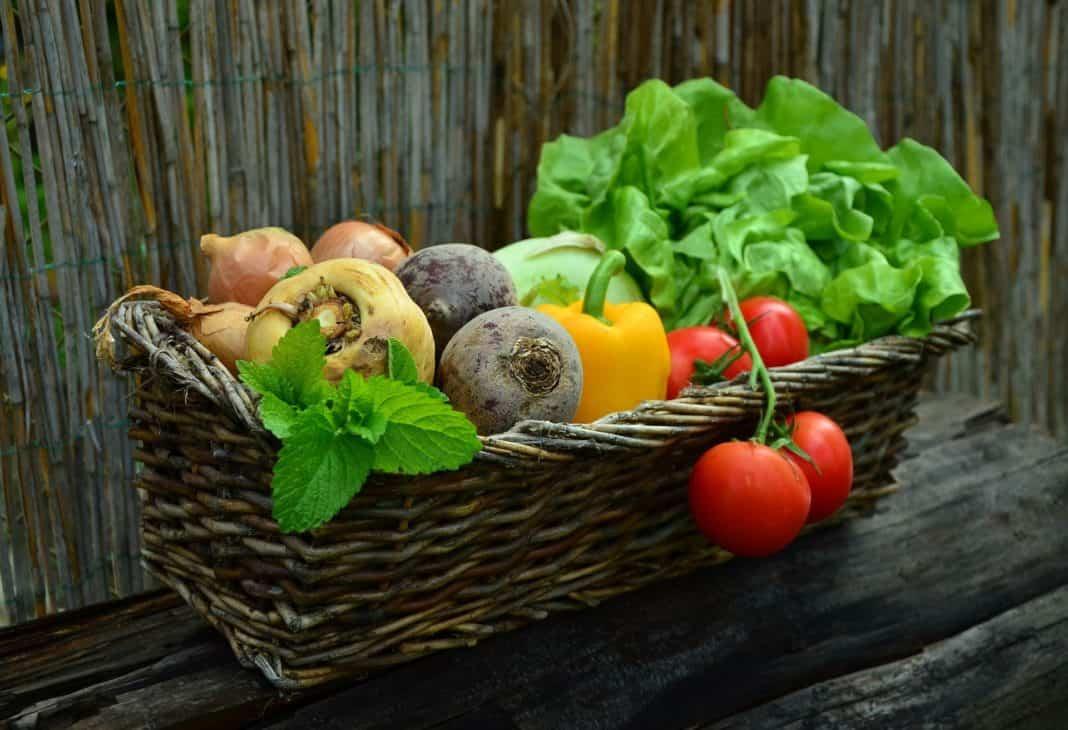 Bayerische Ernährungstage: Ernährung prägt Lebensstil und Gesundheit
