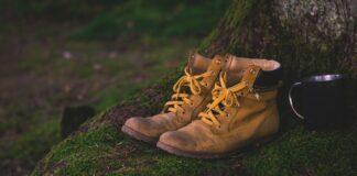 Vier Jahreszeiten am Schluchsee: Wanderungen im Hochschwarzwald