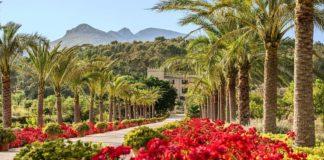 Björn Spaude leitet das Castell Son Claret auf Mallorca