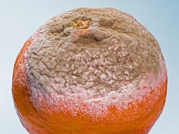 Gefahr durch antibiotikaresistente Keime in Lebensmitteln verringern