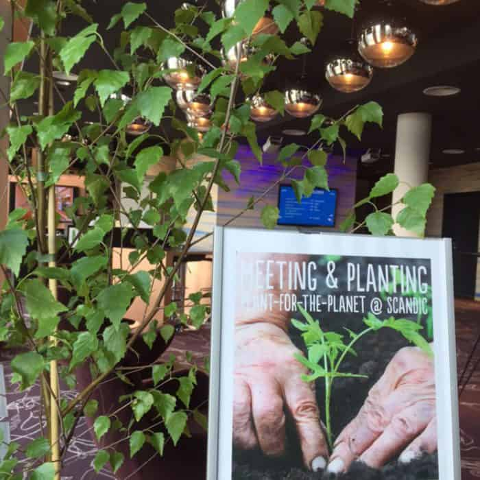 MEETING & PLANTING – PLANT-FOR-THE-PLANET @ SCANDIC
