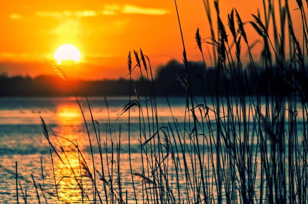 Sommerlicher Wellnesstrip an den Ruppiner See in Brandenburg