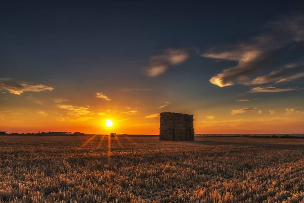 Naturnahe Landwege wichtiges Rückgrat für den ländlichen Tourismus