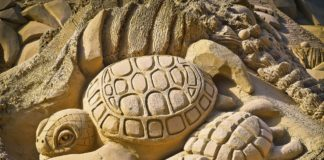 Von Sandskulpturen und Kreidekunst in Sarasota County