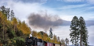 Das Jagdschloß Walkenried: Urlaub im Harz in der Nähe des Hexentanzplatz