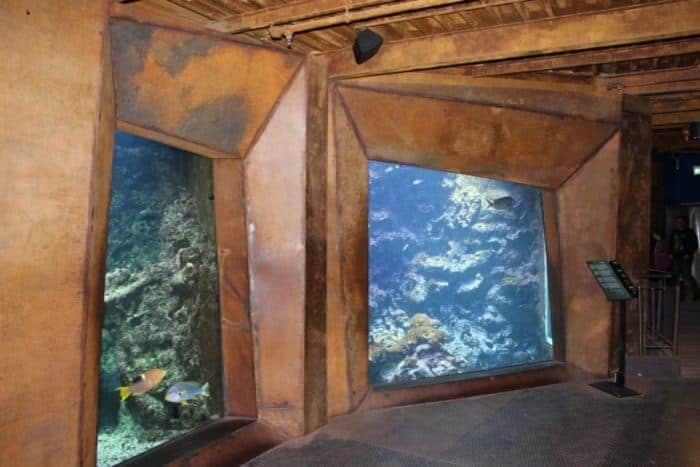 Meerwelten erleben