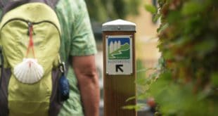 Rheingauer Klostersteig steht am Start. 30.000 Schritte Besinnung. Route verbindet Natur mit innerer Einkehr.