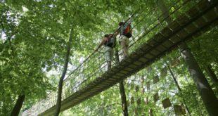 Insgesamt verlaufen jetzt 21 der zertifizierten Wanderstrecken ganz oder zum Teil durch Nordrhein-Westfalen.