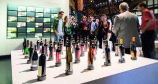 Im Weinbaumuseum Stuttgart hält die Weihnachtszeit Einzug.