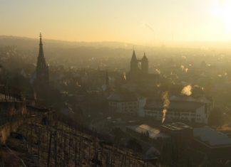 In Baden und Württemberg geht es beim Weinbau hoch hinaus