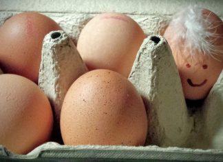 Kann ich Eier einfrieren?
