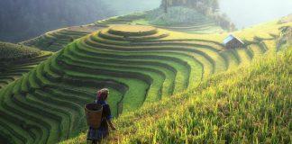 Die besten Reisetipps für Südkorea