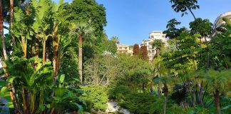 Das Fürstentum der Palmen, Kakteen und duftenden Rosen