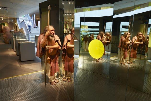 Ausstellungsbereich Neanderthal Museum