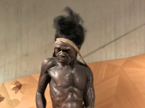 Urmensch Neanderthal Museum