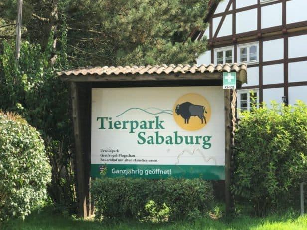 Westlich grenzt der Urwald Sababurg an den Park, der auch vom Aussterben bedrohte Wildtierarten hält.