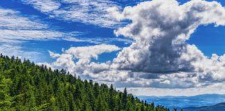 Einfach abschalten und Sinne einschalten - In der Natur mit BAYERN TOURISMUS.