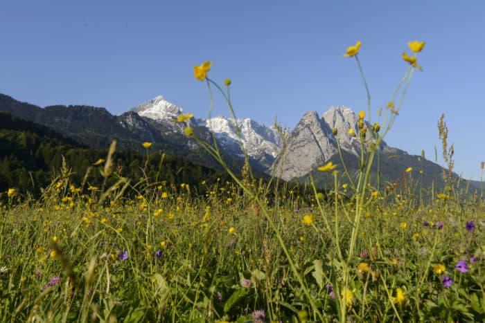 Der Ruf des Berges: Mit neuer App die Zugspitz Region ganz anders erleben.