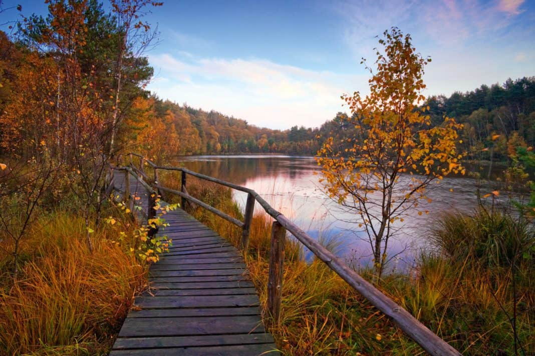 Urlaubsland Mecklenburg-Vorpommern startet Herbstkampagne.