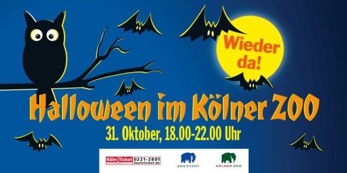 Spaß für die ganze Familie: Die große Halloween-Nacht im Kölner Zoo