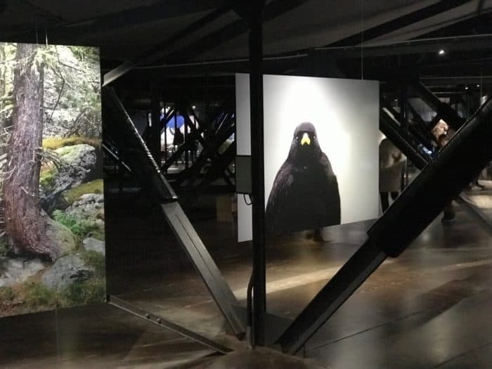 IMG_6390-e1540762546698 Gasometer Oberhausen - Europas höchste Ausstellungshalle