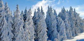 Tölzer Land: Geheimtipps für den Advent