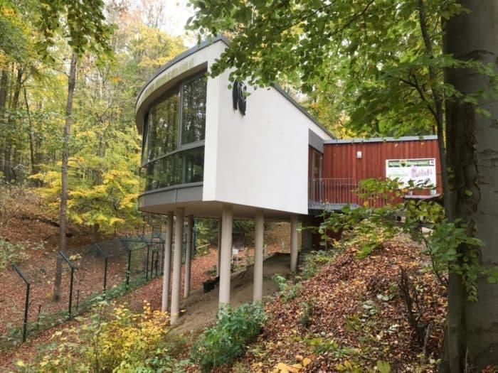 Aussichtsplattform und Cafe Bärenpark Worbis