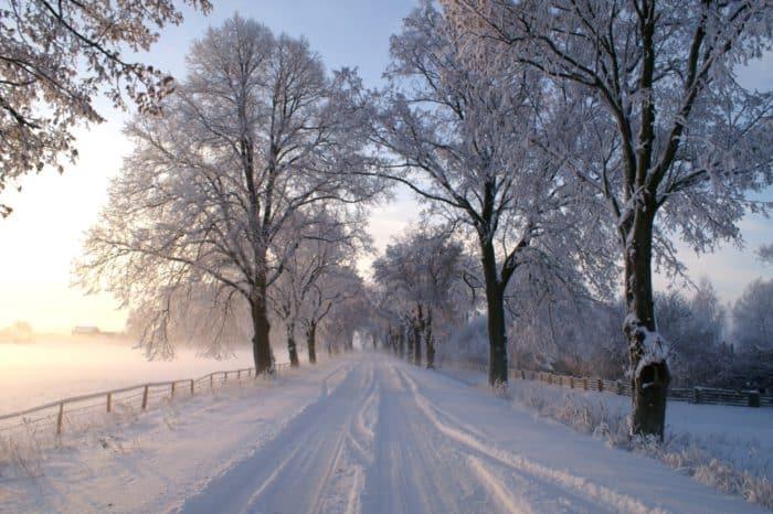 """Winterliches Brandenburg"""" - Winterruhe und Erholung in der Prignitz"""