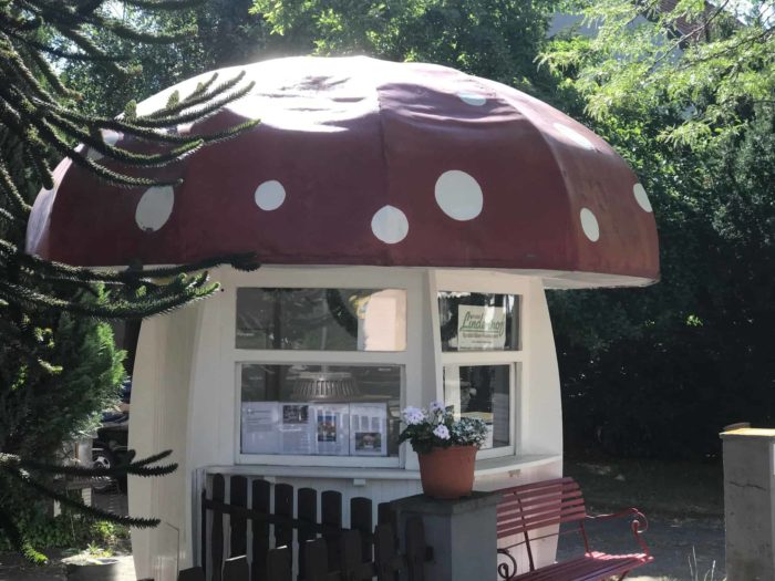 Milchkiosk Bad Sachsa: Eine Reise in die Vergangenheit der 1950er Jahre