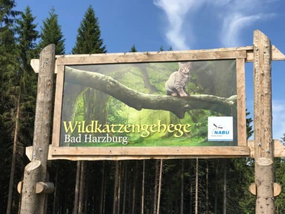 Hinweistafel Wildkatzengehege Bad Harzburg