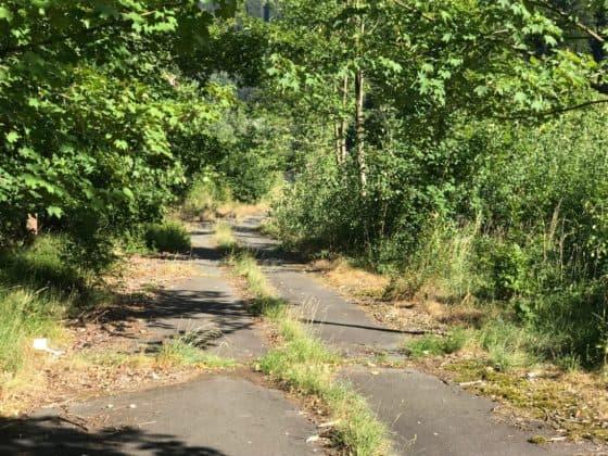 Reste der alten Werksstraße