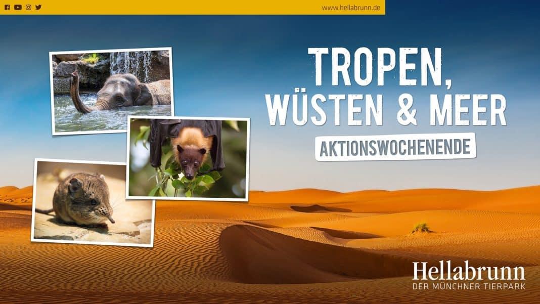 Tierpark Hellabrunn: Aktionswochenende Tropen, Wüsten und Meer