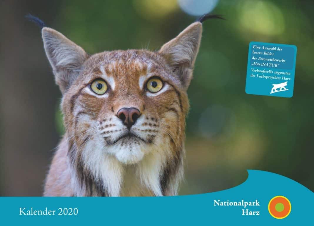 Gewinnerbilder des Fotowettbewerbs HarzNATUR 2019 gekührt