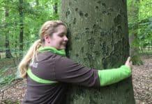 Beim Waldbaden im Taunus die Heilkräfte der Natur erleben