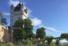 Eltville: Die Sekt- und Rosenstadt im Rheingau erleben
