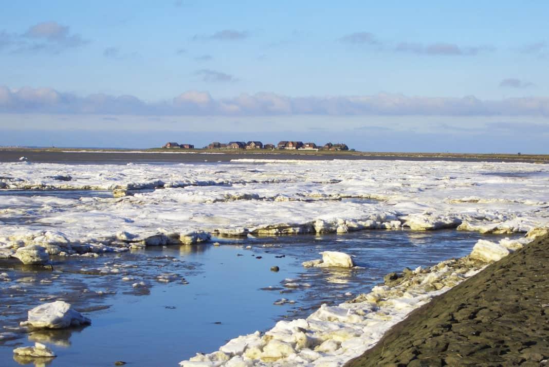 Das Wattenmeer erleben: Von Hallig Hooge zum Japsand im Winter