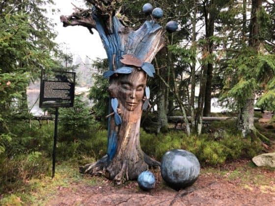 Hexe Oderteich im Harz