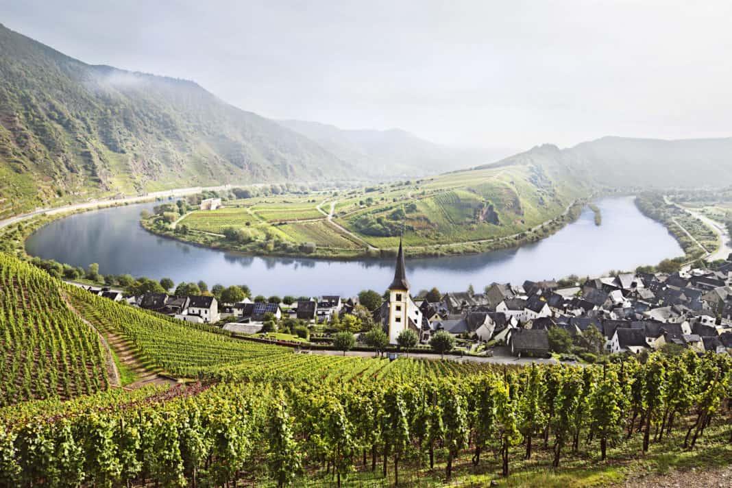 Deutschlands schönste Weinwanderwege zur Traubenlese