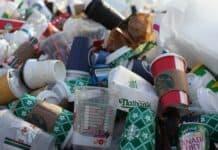 Teller, Besteck, To-go-Becher und Einweg-Plastik ab wird verboten