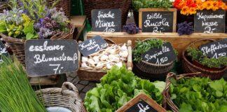 Demeter, zur nachhaltigsten Marke Deutschlands gewählt
