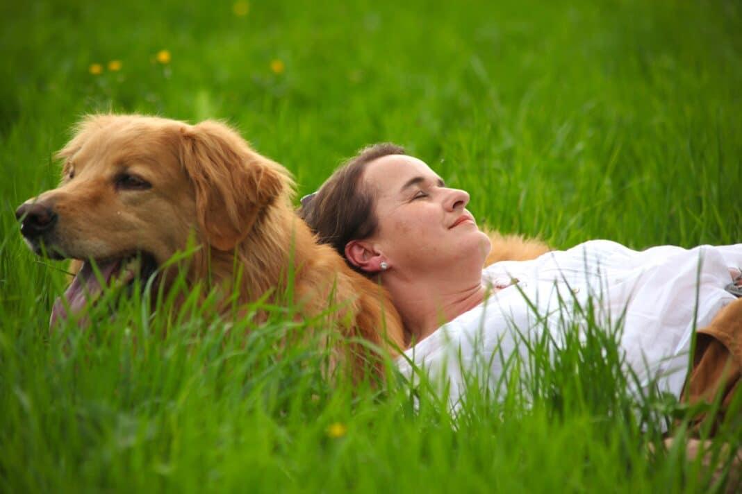 Der Pharisäerhof: einmaliger Wohlfühlort für Mensch und Hund