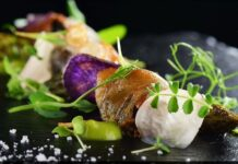 Elements Catering – Professionelles Catering aus Frankfurt