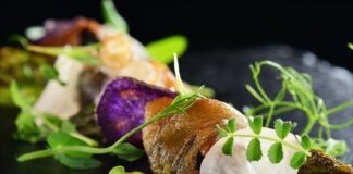 Elements Catering – Professionelles Catering aus Frankfurt