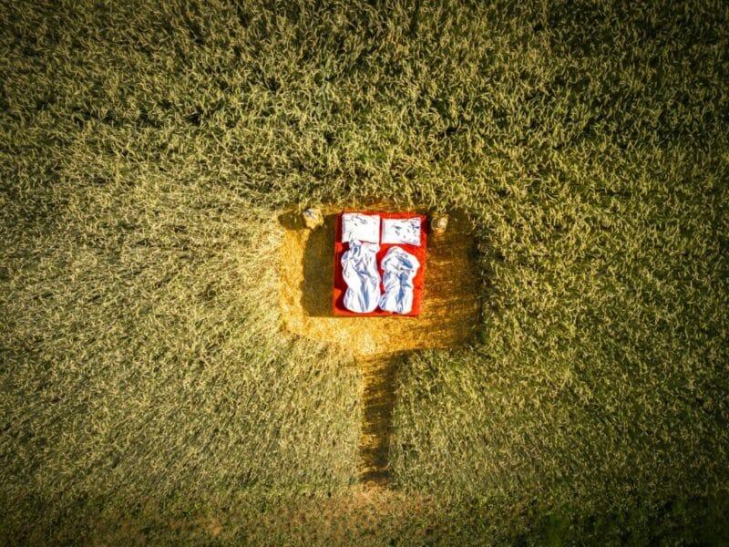 """Beim """"Roter Hahn""""-Mitglied Haflinger Hof in Südtirols Süden nächtigen Gäste wahlweise in nach Zirbenholz duftenden Ferienwohnungen oder im """"Bett im Kornfeld"""". Bild: Haflinger Hof"""