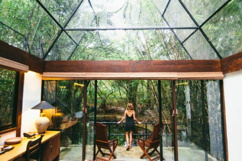 Unmöglich, sich satt zu sehen – Gäste des Diyabubula in Sri Lanka wohnen mitten im Dschungel. Bild: Diyabubula Barberyn Art & Jungle Hideaway
