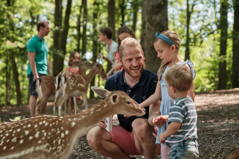 wildparadies (fuettern familie)